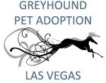 Greyhound Pet Adoption Las Vegas  Southern Nevada